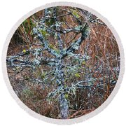 Abstract And Lichen Round Beach Towel