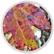 Abstract Autumn Leaf 2 Round Beach Towel