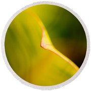 Abstract Leaf Round Beach Towel