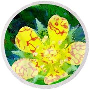 Abstract Of A Wild Buttercup Flower Round Beach Towel