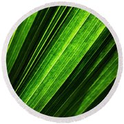 Abstract Of Green Leaf Of Exotic Palm Tree Round Beach Towel