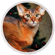 Abyssinian Cat In Christmas Tree Background Round Beach Towel