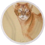 Abyssinian Round Beach Towel