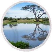 Acacia Tree Reflection Round Beach Towel