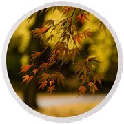 Acers Turning Round Beach Towel