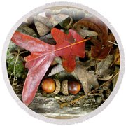 Acorns And Oak Leaves Round Beach Towel
