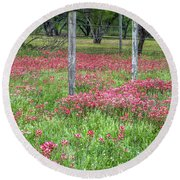 Adding A Splash Of Color-indian Paintbrush In Texas Round Beach Towel