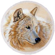 Adobe White Round Beach Towel by Sandi Baker