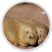 Adorable Pair Of Prairie Dogs Cuddling Together Round Beach Towel