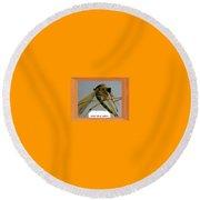 Aedes Fulvus Pallens- Mosquito Round Beach Towel