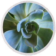 Aeonium Round Beach Towel