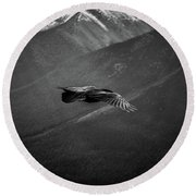 Aerial Predator Over Banff Round Beach Towel