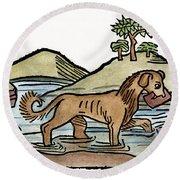 Aesop: Dog & Shadow, 1484 Round Beach Towel