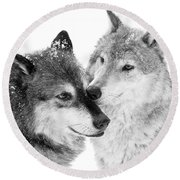 Affection Of Wolves Round Beach Towel