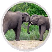 African Elephants Interacting Round Beach Towel