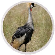 African Grey Crowned Crane Round Beach Towel