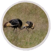 African Grey Crowned  Crane With Chick Round Beach Towel