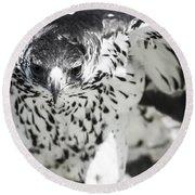 African Hawk Eagle 2 Round Beach Towel