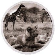 African Life Round Beach Towel