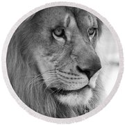 African Lion #8 Black And White Round Beach Towel