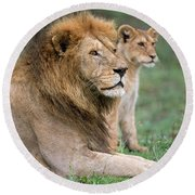 African Lion Panthera Leo With Its Cub Round Beach Towel