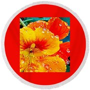 After The Rain Color Round Beach Towel