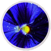 After The Rain ... Round Beach Towel