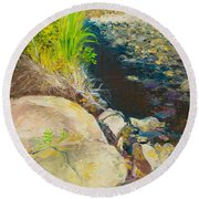 Afternoon Beside The Lane Cove River Round Beach Towel