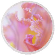 Afternoon Delight Macro 1. The Beauty Of Irises Round Beach Towel