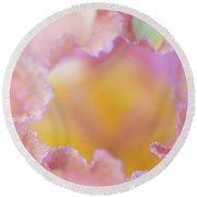 Afternoon Delight Macro. The Beauty Of Irises Round Beach Towel