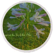 Agapanthus Dawn Round Beach Towel