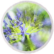 Agapanthus Perfection Round Beach Towel