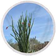 Agave And Cactus Round Beach Towel