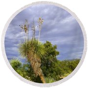 Agave Cactus And A Purple Sky Round Beach Towel