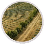 Agave Fields Round Beach Towel
