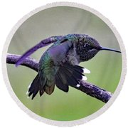 Aggressive Behavior - Ruby-throated Hummingbird Round Beach Towel