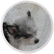 Airport Pup Round Beach Towel