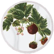Akala Berries Round Beach Towel