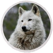 Alawa The Wolf Rests Round Beach Towel