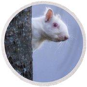 Albino Squirrel Round Beach Towel