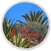 Algarve Plants Round Beach Towel
