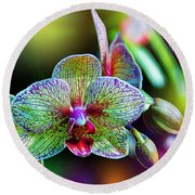 Alien Orchids Round Beach Towel by Bill Tiepelman