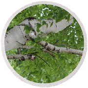 All About Trees Round Beach Towel