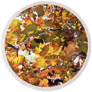 All The Leaves Are Red And Orange Fall Foliage With Sunshine Round Beach Towel