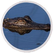 Alligator 17 Round Beach Towel
