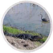 Alligator And Heron Round Beach Towel