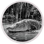 Alligator Bags Of Port Aransas Round Beach Towel