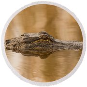 Alligator Head Round Beach Towel