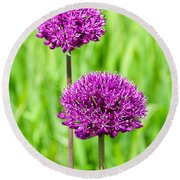 Alliums Round Beach Towel