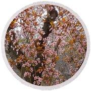 Almond Tree Flowers 05 Round Beach Towel